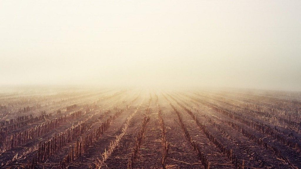 Ammoniak auf einem Feld
