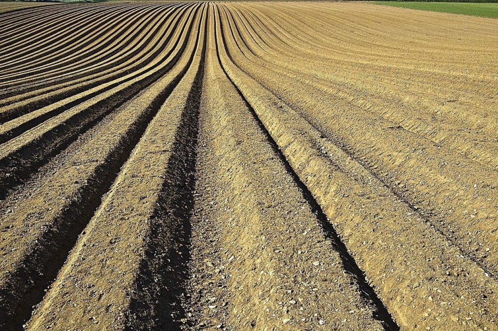 Glyphosat in der Landwirtschaft