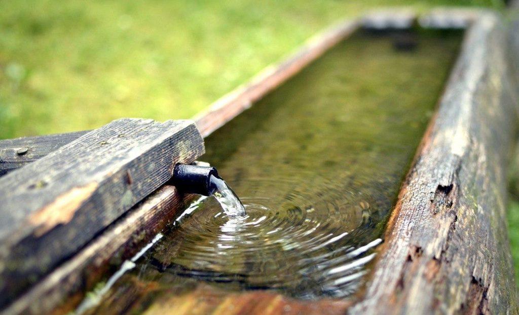 Nitrat im Wasser